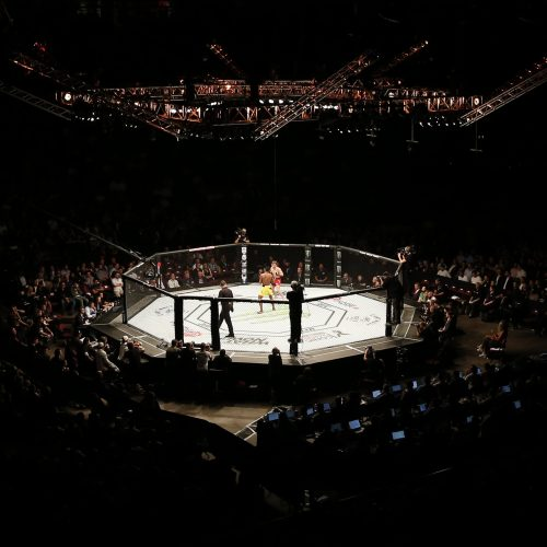 UFC's new frontier is a huge opportunity for everyone involved