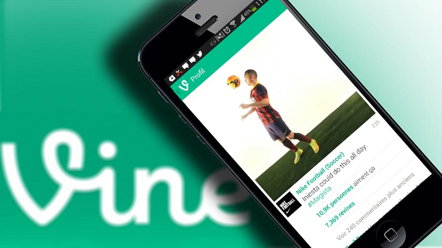 The Hidden Value Of Vine